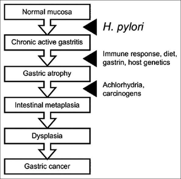 Gastric cancer medscape, Hpv warts medscape